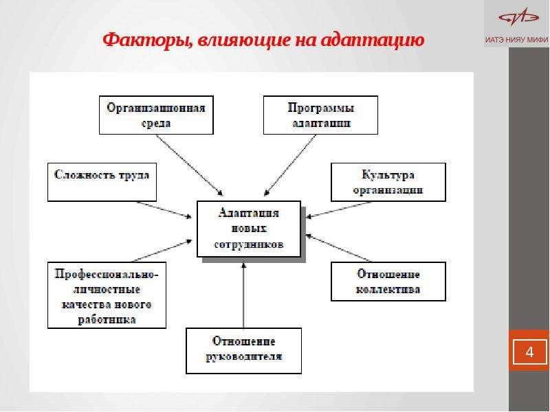 Факторы, влияющие на адаптацию