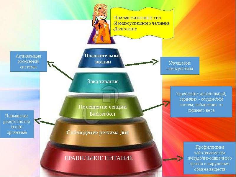 Моя траектория здорового образа жизни, слайд 23