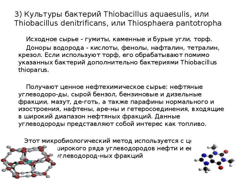 3) Культуры бактерий Thiobacillus aquaesulis, или Thiobacillus denitrificans, или Thiosphaera pantot