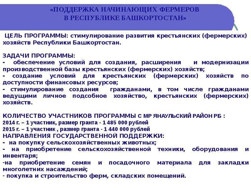 Консультационная деятельность МБУ ИКЦ «Янаул Информ» муниципального района Янаульский район РБ, слайд 4