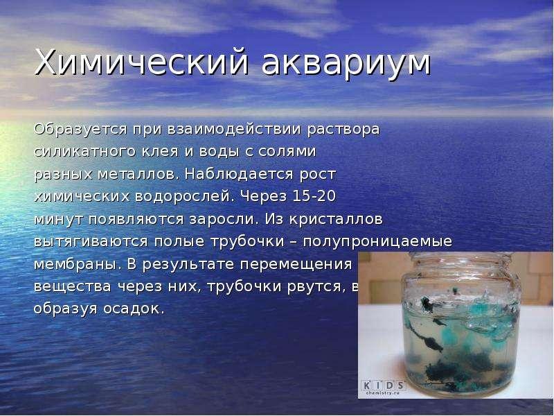 Химический аквариум Образуется при взаимодействии раствора силикатного клея и воды с солями разных м