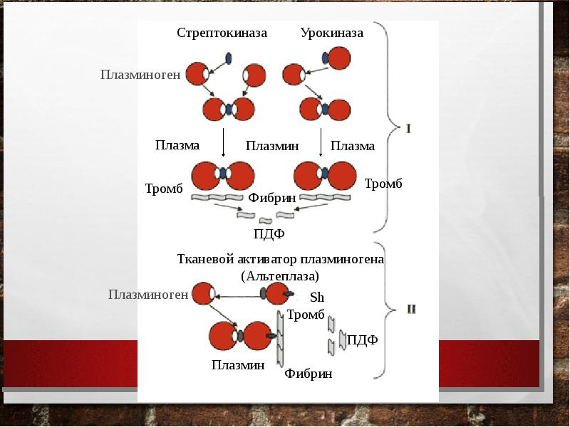 Тромбоэмболия ветвей легочной артерии: патофизиология, клиника, диагностика, лечение, слайд 34