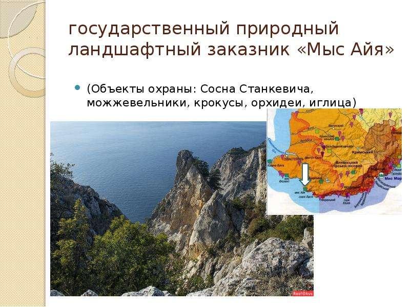 государственный природный ландшафтный заказник «Мыс Айя» (Объекты охраны: Сосна Станкевича, можжевел