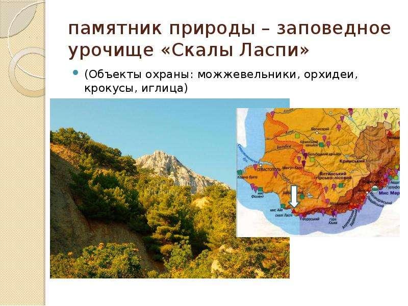 памятник природы – заповедное урочище «Скалы Ласпи» (Объекты охраны: можжевельники, орхидеи, крокусы