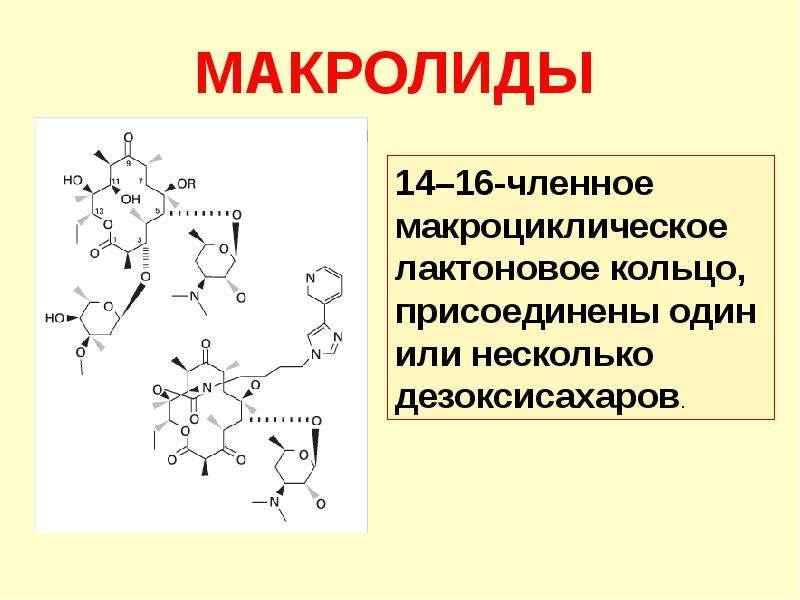 Антибиотики. Классификация антибиотиков по механизму действия, слайд 49