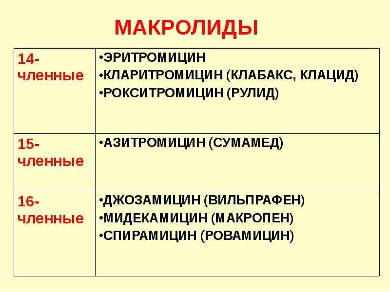 МАКРОЛИДЫ