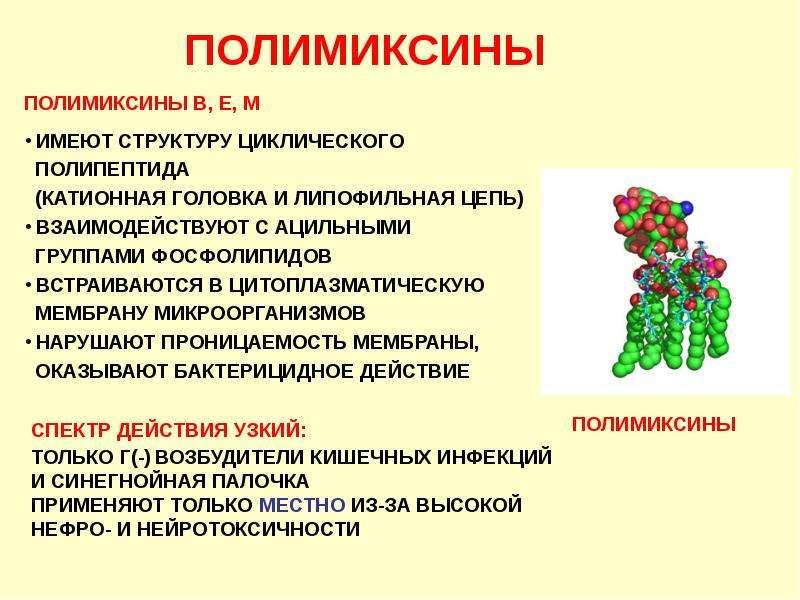 Антибиотики. Классификация антибиотиков по механизму действия, слайд 8