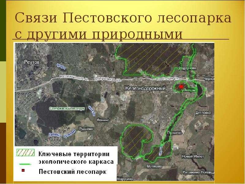 Связи Пестовского лесопарка с другими природными территориями