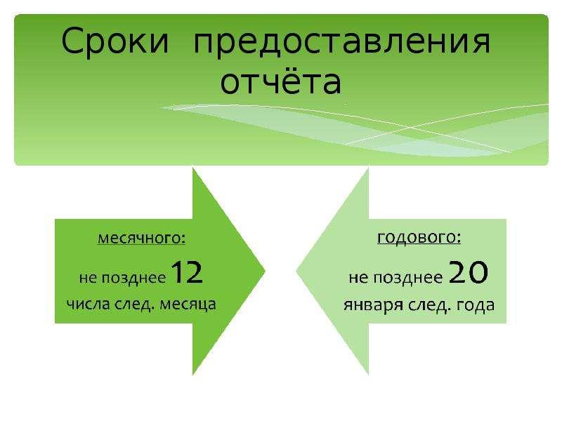Сроки предоставления отчёта
