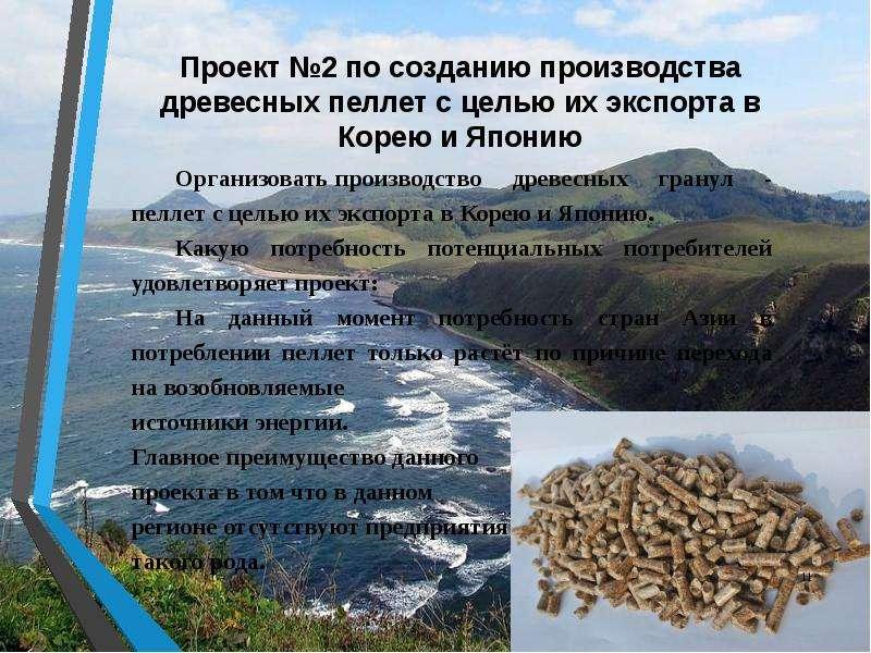 Проект №2 по созданию производства древесных пеллет с целью их экспорта в Корею и Японию Организоват