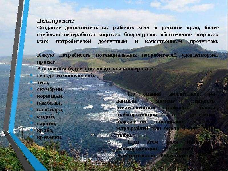 Цели проекта: Цели проекта: Создание дополнительных рабочих мест в регионе края, более глубокая пере