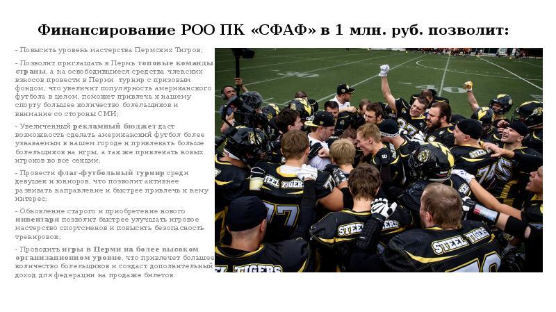 Финансирование РОО ПК «СФАФ» в 1 млн. руб. позволит: - Повысить уровень мастерства Пермских Тигров;
