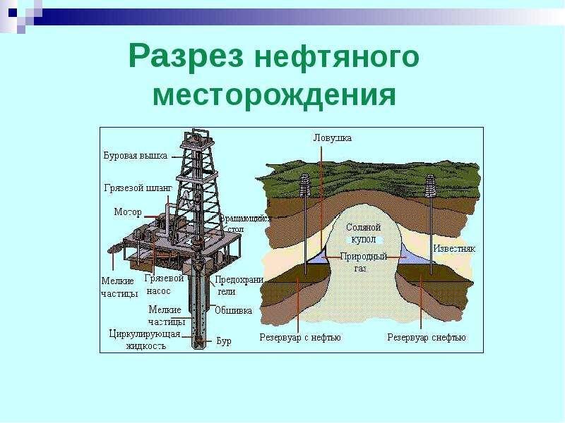 Разрез нефтяного месторождения