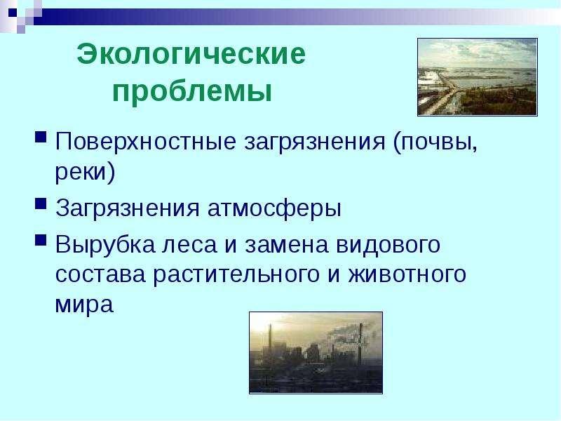 Экологические проблемы Поверхностные загрязнения (почвы, реки) Загрязнения атмосферы Вырубка леса и