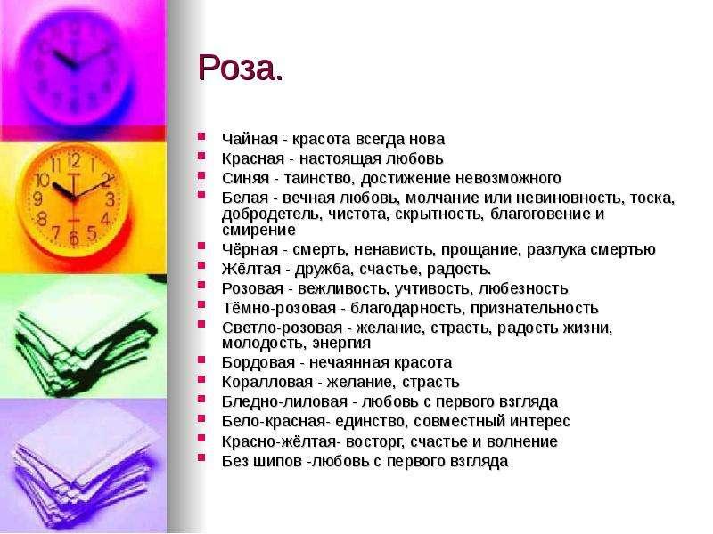 Роза. Чайная - красота всегда нова Красная - настоящая любовь Синяя - таинство, достижение невозможн