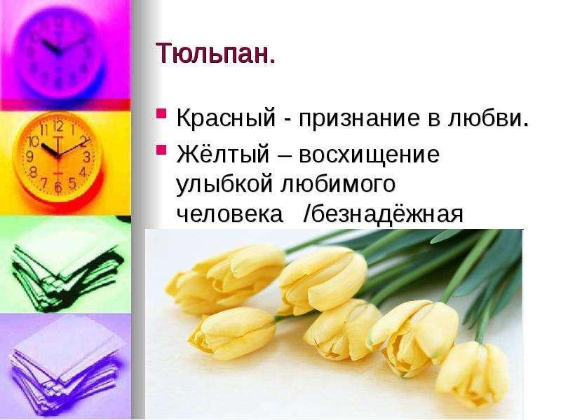 Тюльпан. Красный - признание в любви. Жёлтый – восхищение улыбкой любимого человека /безнадёжная люб