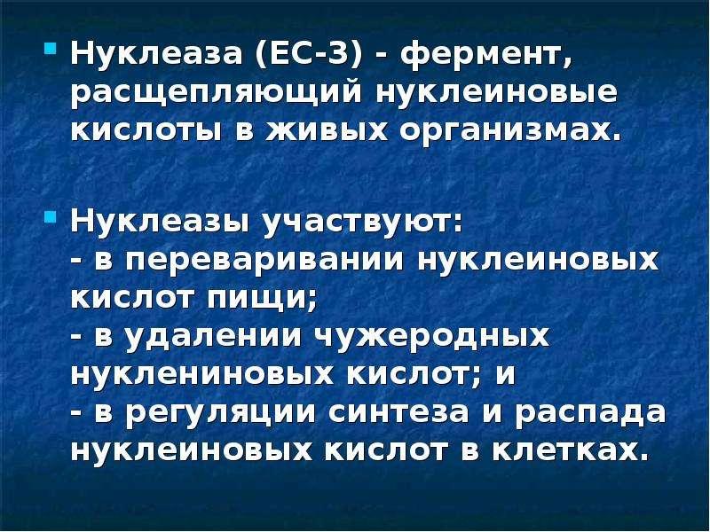 Нуклеаза (EC-3) - фермент, расщепляющий нуклеиновые кислоты в живых организмах. Нуклеаза (EC-3) - фе