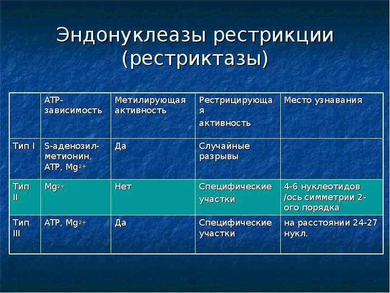 Эндонуклеазы рестрикции (рестриктазы)