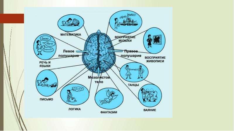 Восприятие и понимание в речевой деятельности, слайд 46
