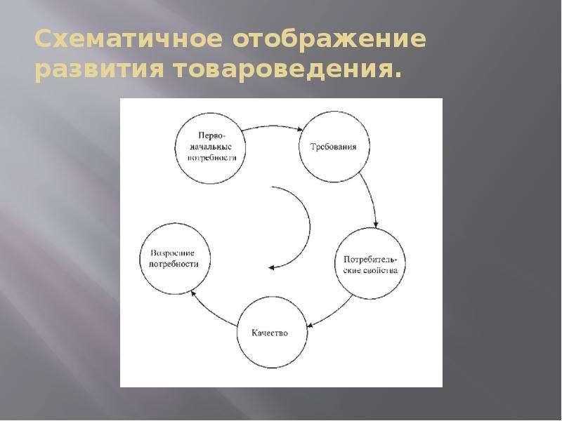 Схематичное отображение развития товароведения.