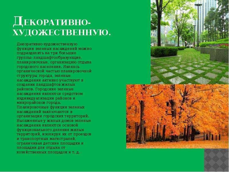 Декоративно- художественную. Декоративно-художественную функции зеленых насаждений можно подразделит