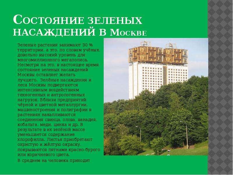 Состояние зеленых насаждений в москве Зеленые растения занимают 30 % территории, а это, по словам уч
