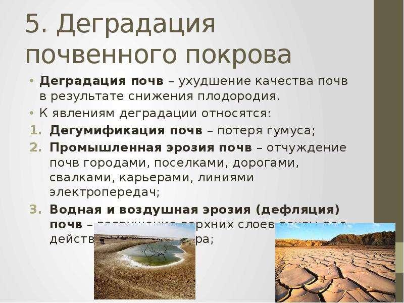 5. Деградация почвенного покрова Деградация почв – ухудшение качества почв в результате снижения пло