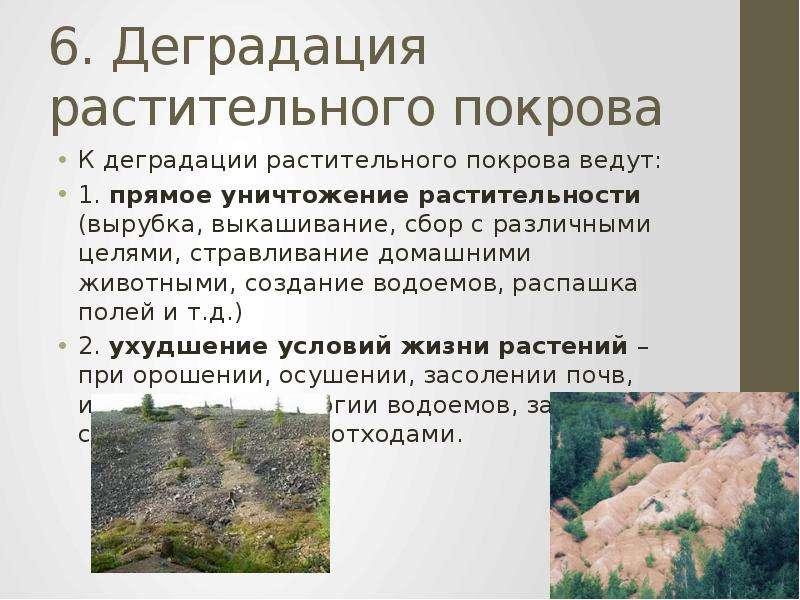 6. Деградация растительного покрова К деградации растительного покрова ведут: 1. прямое уничтожение