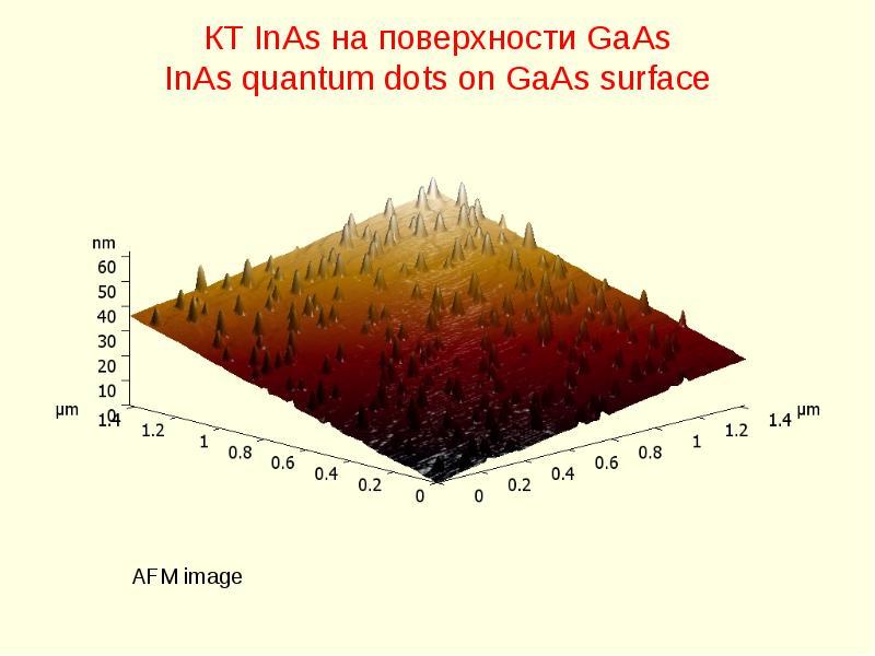 КТ InAs на поверхности GaAs InAs quantum dots on GaAs surface