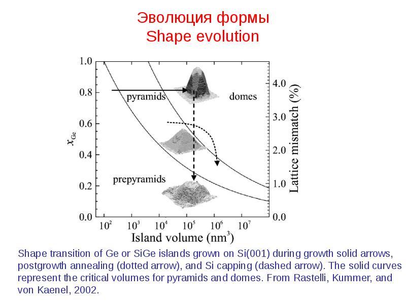 Эволюция формы Shape evolution