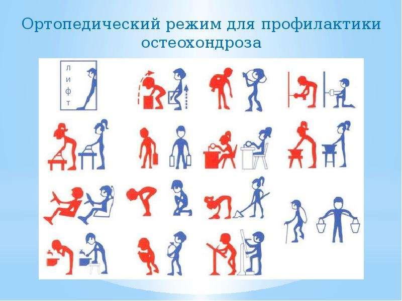 Первичная профилактика остеохондроза, слайд 19