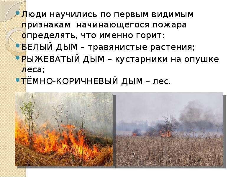Люди научились по первым видимым признакам начинающегося пожара определять, что именно горит: Люди н