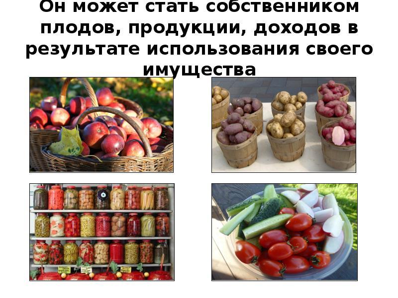 Он может стать собственником плодов, продукции, доходов в результате использования своего имущества
