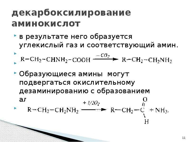 декарбоксилирование аминокислот в результате него образуется углекислый газ и соответствующий амин.