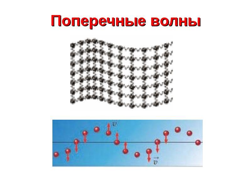 вам картинки продольных и поперечных волн кружка