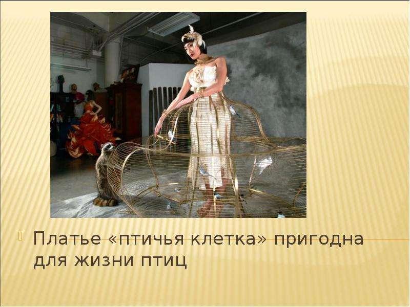 Платье «птичья клетка» пригодна для жизни птиц