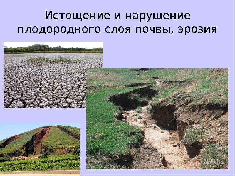 Истощение и нарушение плодородного слоя почвы, эрозия