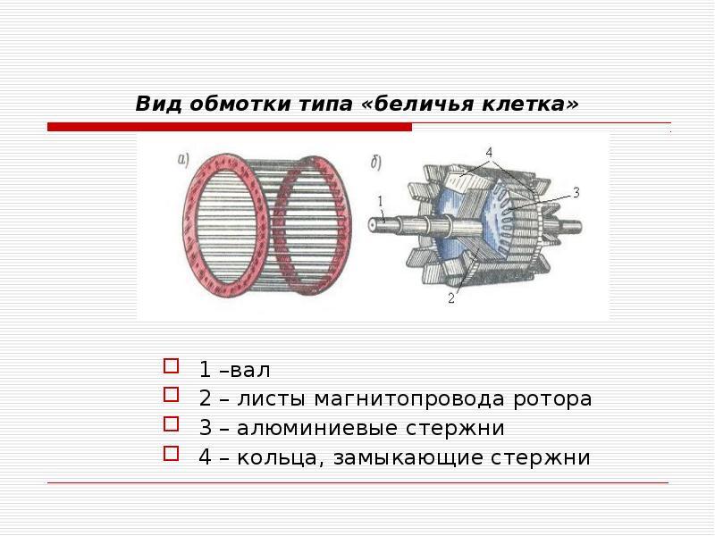 Вид обмотки типа «беличья клетка» 1 –вал 2 – листы магнитопровода ротора 3 – алюминиевые стержни 4 –