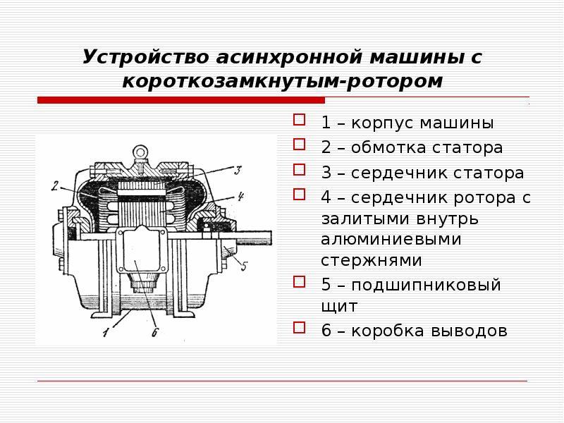 Устройство асинхронной машины с короткозамкнутым-ротором 1 – корпус машины 2 – обмотка статора 3 – с