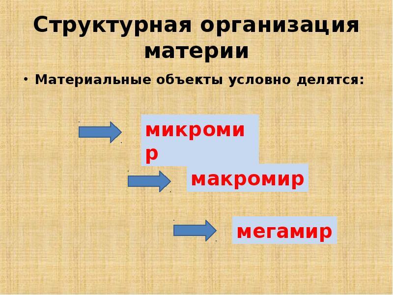 Структурная организация материи Материальные объекты условно делятся: