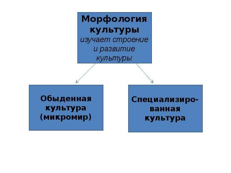 Культурология в системе гуманитарного знания, слайд 17