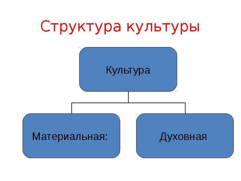Структура культуры