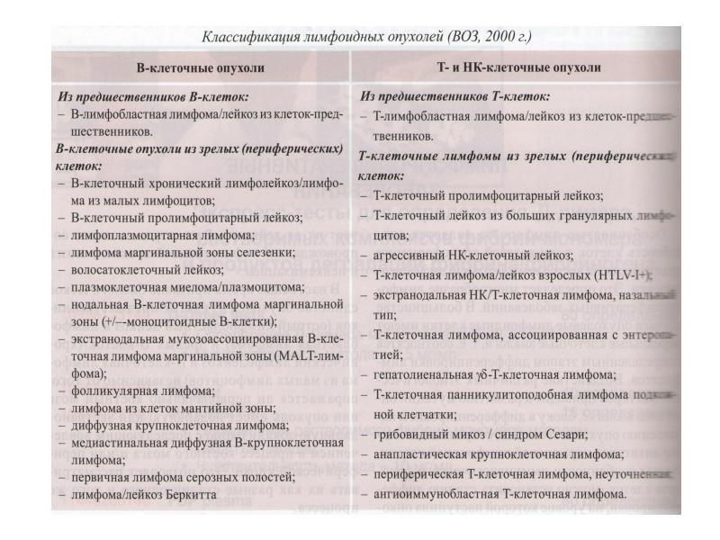 Острые лейкозы. Лабораторная диагностика гемобластозов, слайд 18