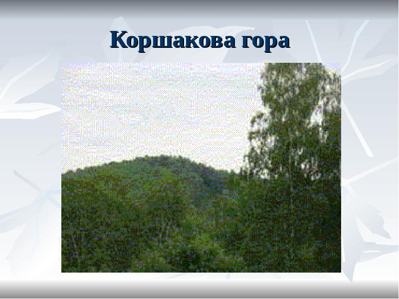 Коршакова гора