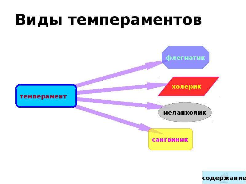 Виды темпераментов