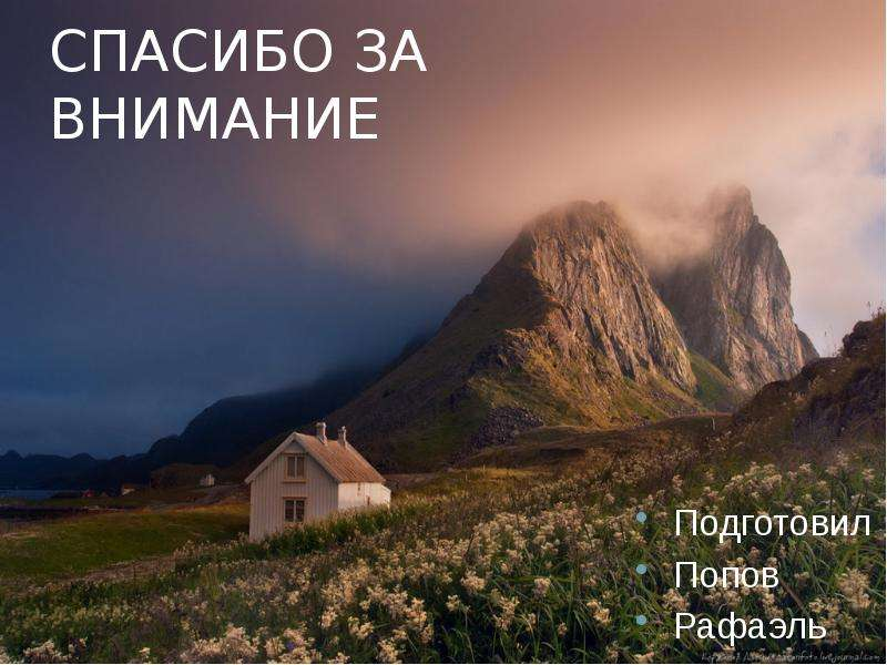 СПАСИБО ЗА ВНИМАНИЕ Подготовил Попов Рафаэль