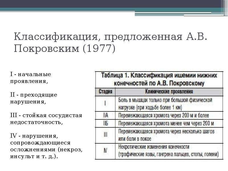 Классификация, предложенная А. В. Покровским (1977)
