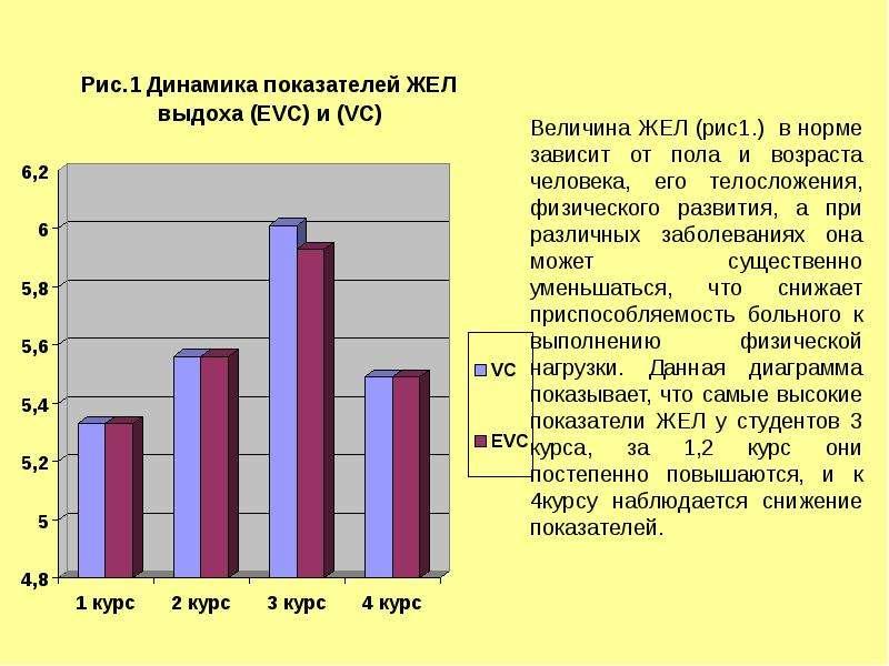 Адаптация дыхательной системы у студентов на различные физические нагрузки, слайд 8