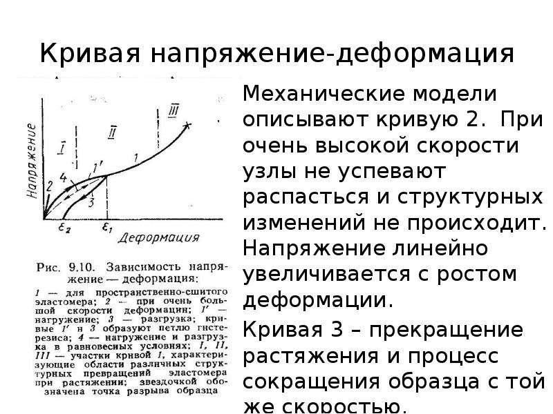 Кривая напряжение-деформация Механические модели описывают кривую 2. При очень высокой скорости узлы