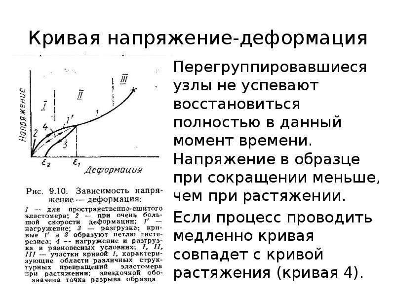 Кривая напряжение-деформация Перегруппировавшиеся узлы не успевают восстановиться полностью в данный
